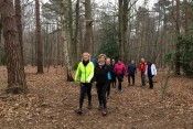 Walking and Jogging available at Thorndon Country Park Essex