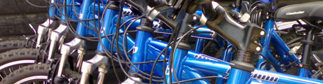 Cycle hire essex Thorndon